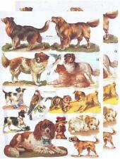 Chromo EF Découpis Chien de race 7163 Embossed Illustrations Dog