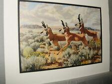 Pronghorn Antelope on Move Remington Wildlife Exhibit