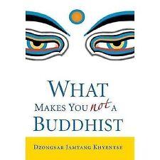 What Makes You Not a Buddhist: By Khyentse, Dzongsar Jamyang