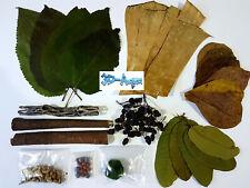 Shrimp Aquarium Kit, Cholla, Catappa, Mulberry, Guava, Banana Leaves food & more