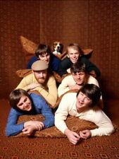 The Beach Boys Fun Retro Dennis Al Jardine Mike Love Giant Wall Print POSTER