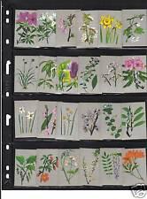 Série  étiquettes  Allumettes Japon Fleurs