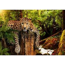 Vlies Fototapete Leopard Tapete Wandbilder XXL Wandtapete Dekoration Runa 9201aP