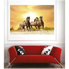 Affiche poster chevaux  66128902 Art déco Stickers