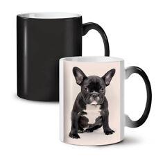 Bulldog Photo Dog Animal NEW Colour Changing Tea Coffee Mug 11 oz | Wellcoda