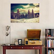 3D Wüste Kiefer Wald Himmel 90 Fototapeten Wandbild BildTapete AJSTORE DE Lemon