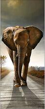 Papier peint pour porte trompe l'oeil déco Eléphant réf 512