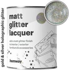 Hemway Silver Gold Holographic Glitter Matt Varnish Lacquer Protective