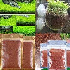 Aquarium Live Plant Seed Fish Tank Decor Glossostigma Elatinoides Hemianthus