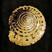 Caroline Kelly: Golden Ocean Gems IV Keilrahmen-Bild Leinwand maritim Muscheln