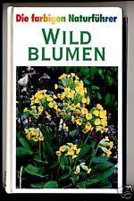 Wildblumen--Farbiger Naturführer-TOP