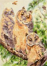 Counted Cross Stitch Kit OWL TRIPLET Birds Animals