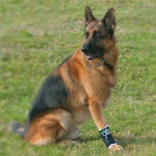 Balto Dog Carpal Brace: Arthritis, Lameness, Support. BT-JOINT Orthopaedic