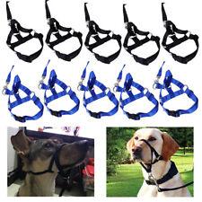 Nylon Dog Pet Head Collar Halter Leash Leader No Pull Bite Training Straps 4Size