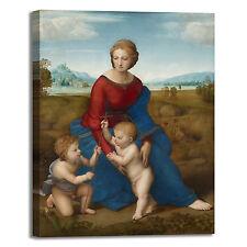 Raffaello Madonna sul prato quadro stampa tela dipinto telaio arredo casa