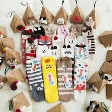 Box Floor Thicken Socks Animal Embroidery Hosiery Ankle Towel Winter Warm