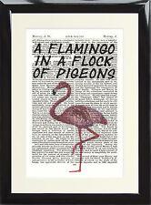 Pink Flamingo Inspire Quote Vintage Antique Dictionary Art Print Flock Of Pigeon