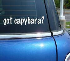 got capybara? Rodent Funny Decal Sticker Art Wall Car Cute