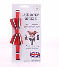 NUOVO Cani Dickie Bow COLLARE Carino Cucciolo Cool Pet regolabile Cravatta Bandana