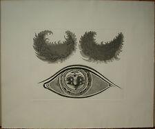 Wolfgang Hutter g. 1928 «Die Augen im Auge» 45/50/350