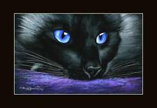 Ragdoll Cat pensando Print por me garmashova