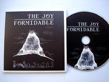 THE JOY FORMIDABLE - CRADLE - VERY RARE 2011 PROMO CD
