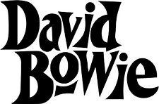 David Bowie original Vinyl Decal bumper sticker Ziggy Stardust Aladdin Sane