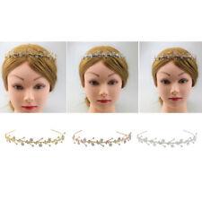 Wedding Prom Bridal Rhinestone Flower Crown Headband Veil Tiara Hair Jewelry