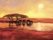 Jonathan Sanders Canvas Art Print 30 Different Africa Landscape & Beach Pictures