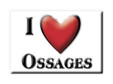 MAGNETS FRANCE - FRANCHE COMTÉ SOUVENIR AIMANT I LOVE OSSAGES (LANDES)