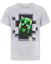 Minecraft Creeper Inside Boy T-shirt en coton gris Tailles 2 à 14 ans