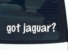 got jaguar? ANIMAL CAT JUGUARS FUNNY DECAL STICKER ART WALL CAR CUTE