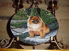 Pomeranians Dog Puppy Pom in Bloom Danbury Mint Barbara Higgins Plate