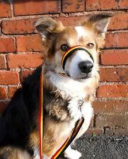 Figura De 8 Ocho Perro Collar De Cabeza De Plomo En 19mm Suave Cojín web Tela
