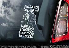 Assistance Hund On Board - Autofenster Aufkleber - Springer Spaniel - V12