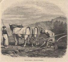 1877  --  CHARRUE BASQUE                          L154