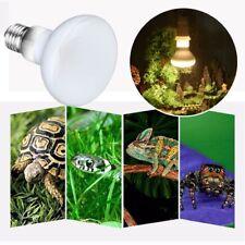 Reptile lizard turtle drying lamp heater Uvb / Uva temperature controller