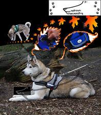 Grey Dog Harness S M L XL padded extra Siberian Husky Malamute Staffordshire