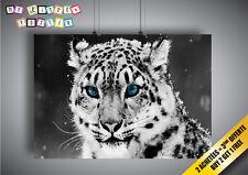 Cartel Poster Tigre Blanco Ojos Azul Nieve