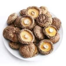 Dried Shiitake Mushrooms Organic Grown Mushrooms Premium Natural Fungus