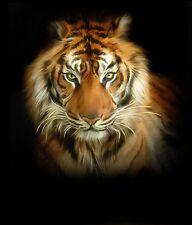 New Lion Tiger Leopard 10x8 Portrait Size Canvas Painting Style Picture Print