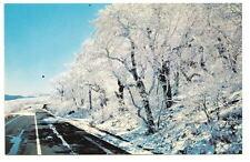 MOUNT MITCHELL NC Blue Ridge Parkway Winter Snow Ice PC Postcard