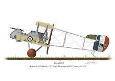 Airco DH2 Aircraft Profile Artwork Robert Saundby A4 A5 Glossy Print WW1 signed
