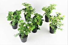 6 Arten Kunstpflanzen mini pflanzen im Topf  grün-weiß  künstliche Pflanzen18 cm