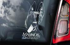 Belgian Malinois on Board - Car Window Sticker - Mechelse Dog Sign Decal - V05