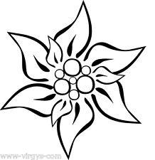 Sticker Fleur d'Edelweiss  10x9cm à 35x30cm Tailles et Coloris Divers (FLEUR033)