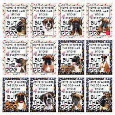 BOXER DOG RETRO METAL SHABBY-CHIC TIN SIGN WALL PLAQUE/FRIDGE MAGNET (81)