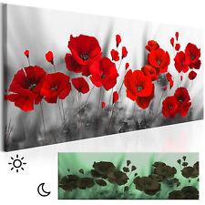 LEINWAND BILDER Mohnblumen Blumen rot Wandbilder xxl Wohnzimmer Leuchtbilder XXL