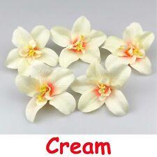 100X Cream Thai Orchid Artificial Flower Head Silk Flower Fake Flower Wedding