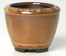 Vaso Bonsai Ø cm 8h7 Soggetto 1 per Erbe di Compagnia Kusamono Shitakusa